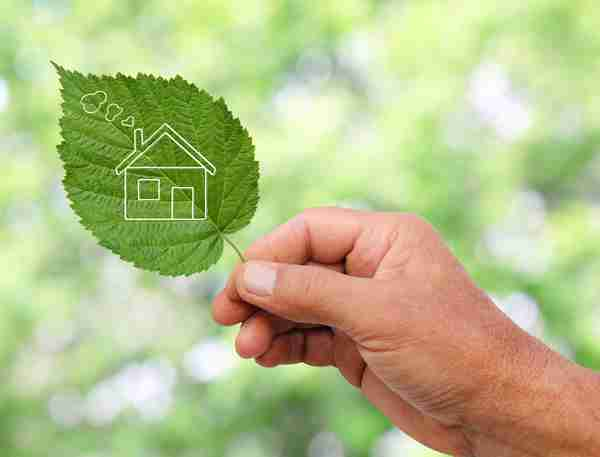 Go Green Home Builder